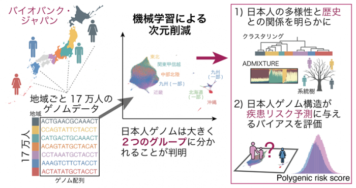 Photo of Machine learning and genomic analysis of the Japanese variety is obviously the Univ, etc