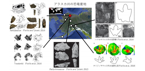 """Photo of Hokkaido is found in the""""more from the Dragon""""belongs to the plant feeding habits of Dinosaurs, 2 continents over an extensive inhabited Hokkaido University, etc."""